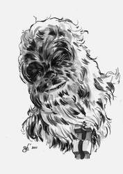 Chewbacca - DSC by gph-artist