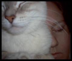 Lets take a nap.. by XxBrokenxXxArtxX