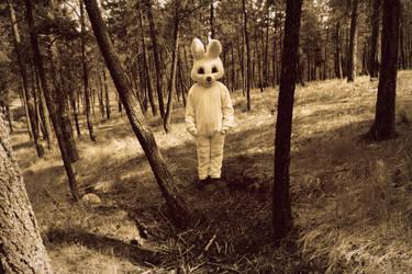 Bunny by T-Thomas