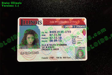 YOLOIDs.com (2014 Illinois Front Novelty ID) by yoloids