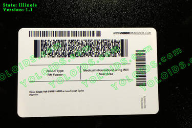 YOLOIDs.com (2014 Illinois Back Novelty ID) by yoloids