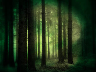 Green Forest by JezyCarole