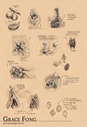 School - Plants Worksheet by fictograph
