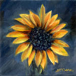 Sunflower by Stungeon