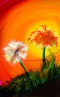 Dandelion Sunset by Flynn-the-cat