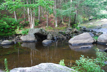 Forest Pool by CompassLogicStock
