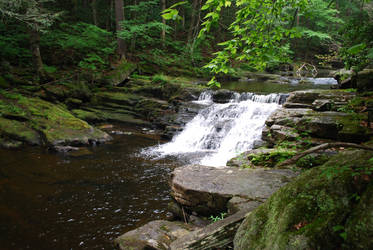 Forest River Waterfall 1 by CompassLogicStock