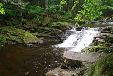 Forest River Waterfall 2 by CompassLogicStock