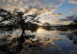 Amazon Sunset by thankyoujames