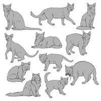 Free Cat Lines 1 - Paint Version by SabraeTrash