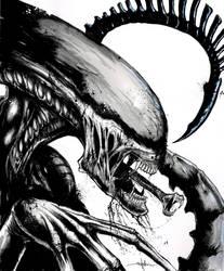 Xenomorph by ShawnCoss