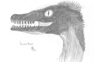 Velociraptor Mongoliensis by AaronTreloar