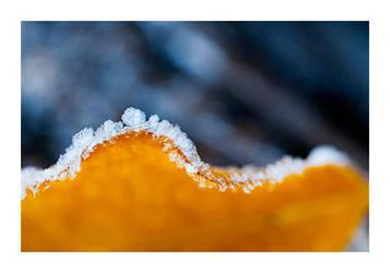 Frosty by fd9z0r