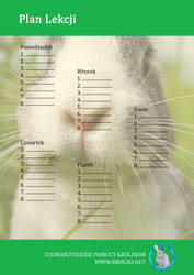 Bunny Timetable 4 by Black---Angel