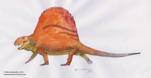 Dimetrodon limbatus - colored by Xiphactinus