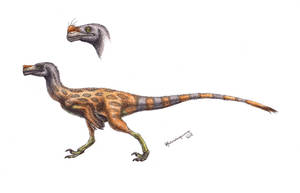 Ornitholestes hermanni by Xiphactinus