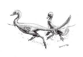 Halszkaraptor escquillei by Xiphactinus