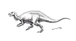 Camptosaurus dispar by Xiphactinus