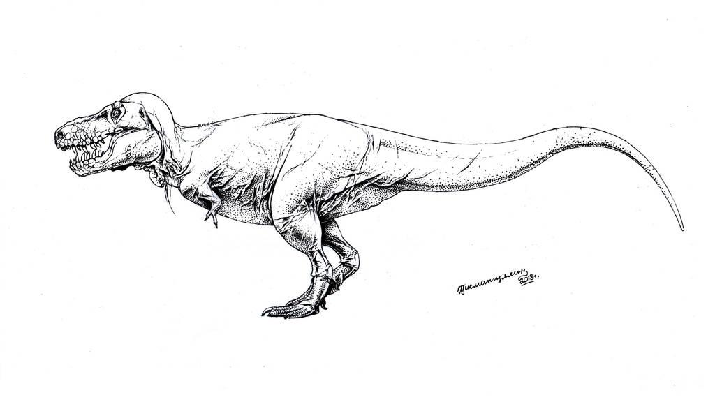 tyrannosaurus rex by xiphactinus on deviantart