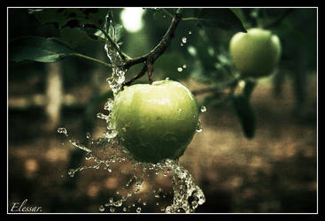 ...splash... by Elessar777