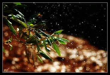 ...rain... by Elessar777