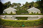 Greenhouses by FabianaSilva