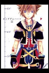 Kingdom Hearts II by nanami-yuki
