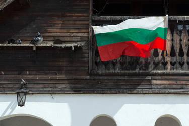Flag by DigitriX