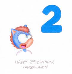 Happy 2nd Birthday, Xander-James! by StefanTheHedgehog
