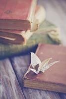 Paper Crane by BronKatzke