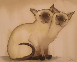 a siamese cat by HOMELYVILLAIN