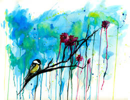 Chickadee by Meaghz