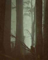 Der Holztempel by Knechter