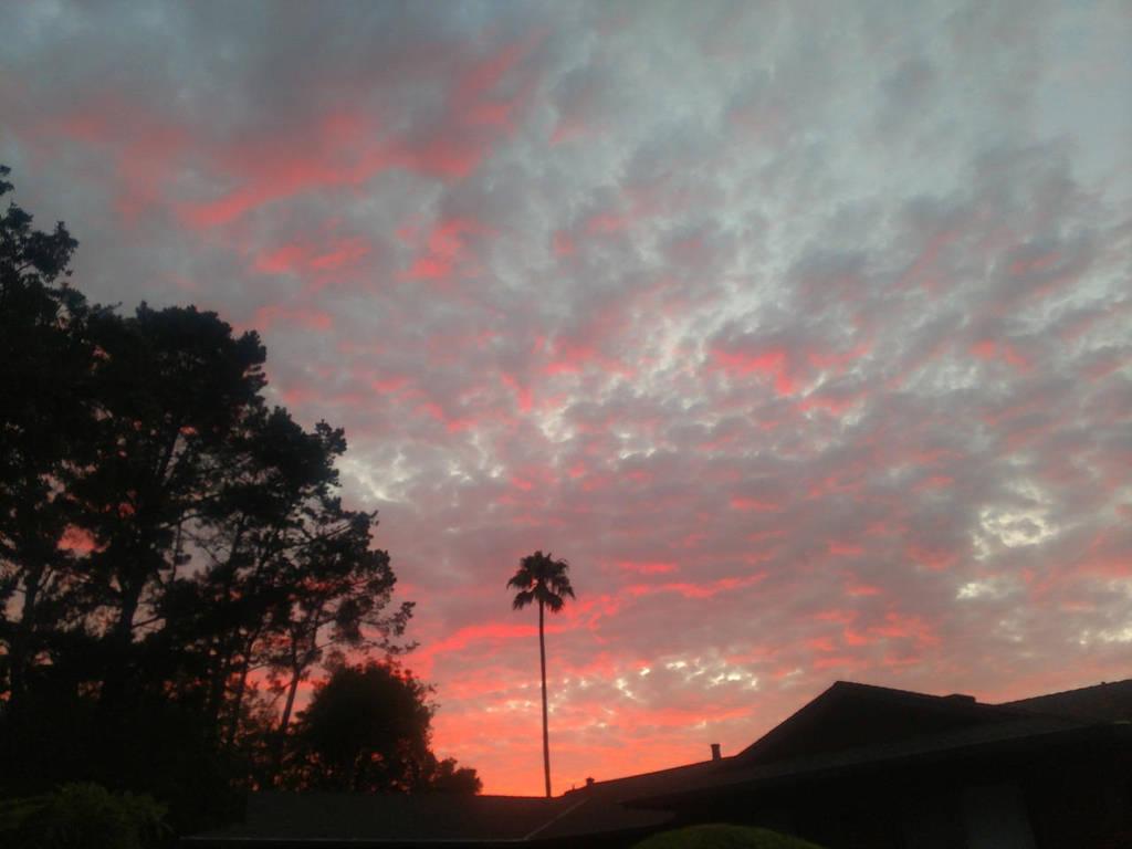 Grapefruit sunset by SnD-Frostey