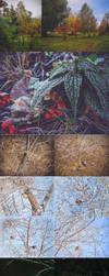 My photos 2017-2018 by IvannaDark