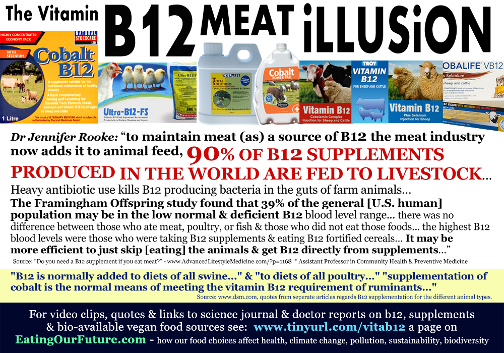 Vitamin B12 Facts Deficiency Supplements Vegans by eatingourfuture