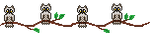 Owl Divider: Free to use by Solmiu