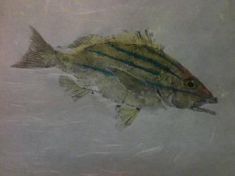 gyotaku by r-baum