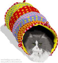Cat by pixellorac