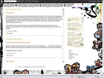 My blog 2007 by irenechew