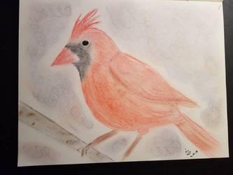 Quickie Cardinal by Kyria-Neko-Chan