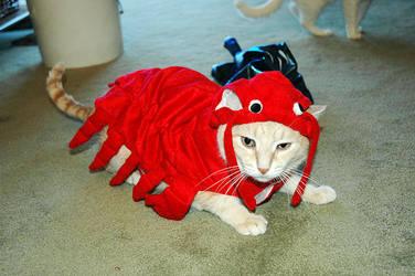 Halloween Costume 1 by MightySquirrel