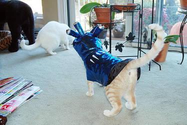 Halloween Costume 2 by MightySquirrel