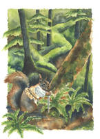 Squirrel by MightySquirrel