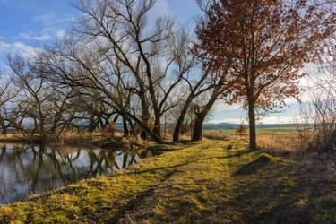 Rural path by vlastas