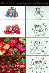 What everyone expects on Christmas by Leonjr4TheGamer