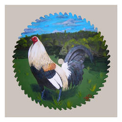 Michigan Grey by feral-fowl
