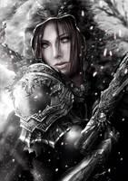 Diablo Contest - Demon Hunter by ArisT0te