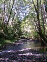 Big Creek 4 by BrotherRabbit