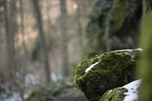 Rock 1 by Lakela